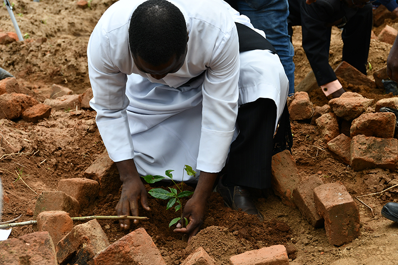NATIONAL BANK IN A NATIONWIDE TREE PLANTING INITIATIVE